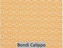 Bondi Calippo