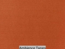 Ambience Tango