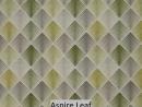 Aspire Leaf
