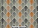 Aspire Mango