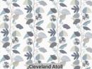 Cleveland Atoll