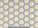 Daisy Pop Chartreuse