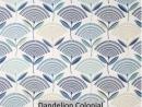 Dandelion Colonial