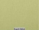 Esprit Mint