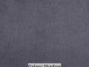 Galaxy Shadow