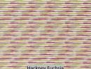 Hackney Fuchsia