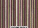Hackwell Fuchsia