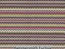 Hammersmith Fuchsia