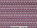 Hampstead Fuchsia